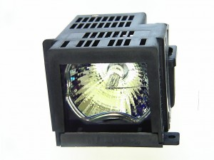 DT02LP / 50022251 - Genuine NEC Lamp for the DT20 projector model