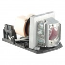 EC.K0100.001 - Genuine ACER Lamp for the X110 projector model