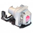 Lamp for OPTOMA EX539