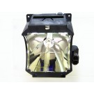 Lamp for TOSHIBA TDP F1 PLUS
