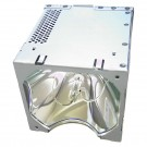 Original Inside lamp for EIKI LC-X3 projector - Replaces 610 298 3135